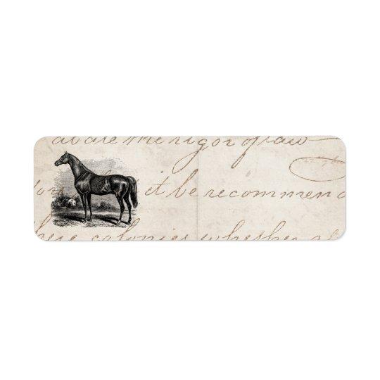Chevaux vintages de pur sang de cheval de course étiquettes d'adresse retour