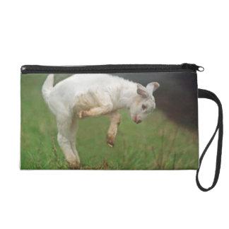 Chèvre blanche de bébé drôle de chèvre sautant sac à main avec dragonne