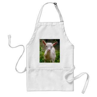 Chèvre d enfant tabliers