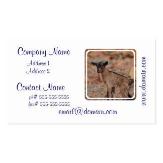 Chèvre de bébé cartes de visite personnelles