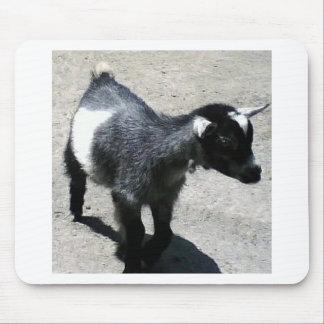 Chèvre de bébé tapis de souris