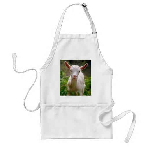 Chèvre d'enfant tabliers