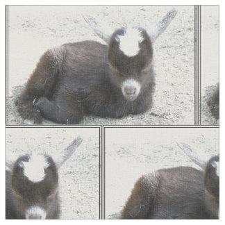 Chèvre d'enfant tissu