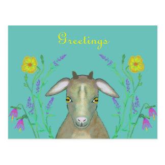 Chèvre mignonne avec les fleurs alpines cartes postales