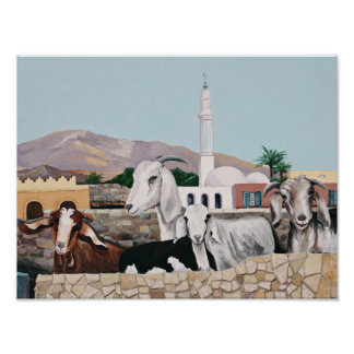 Chèvres de Dahab Posters