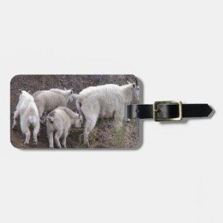 Chèvres de montagne étiquette à bagage