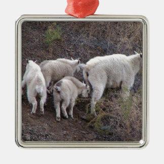 Chèvres de montagne ornement carré argenté