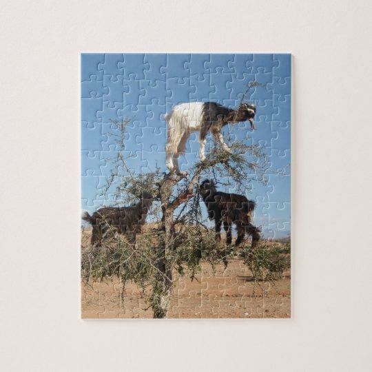 Chèvres drôles dans un arbre puzzle