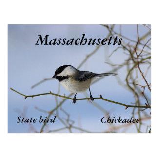 Chickadee Cartes Postales
