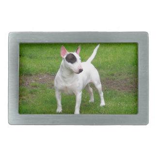 Chien américain de Terrier de pitbull Boucle De Ceinture Rectangulaire