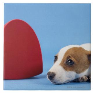 Chien avec le coeur grand carreau carré