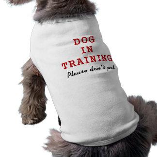Chien dans la formation - T-shirt de chien T-shirt Pour Chien