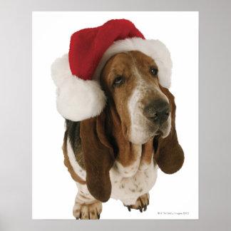 Chien de basset dans le chapeau de Père Noël Affiche
