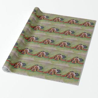Chien de basset-hound de sommeiller papier cadeau noël