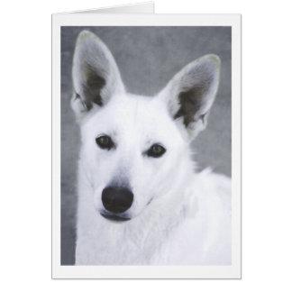 Chien de berger allemand blanc carte de vœux