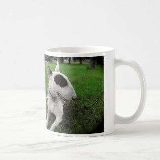 Chien de bull-terrier mug
