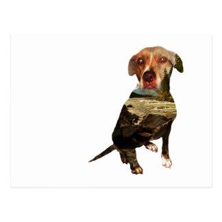 chien de double exposition carte postale