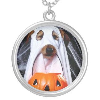 Chien de fantôme - chien drôle - poursuivez collier