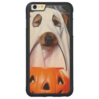 Chien de fantôme - chien drôle - poursuivez coque pare-chocs mince en érable iPhone 6 plus