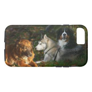 Chien de montagne de Bernese, Belge Shep de chien Coque iPhone 8/7