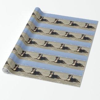 Chien de montagne de Bernese Papier Cadeau