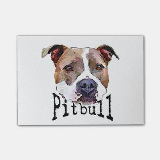 Chien de Pitbull
