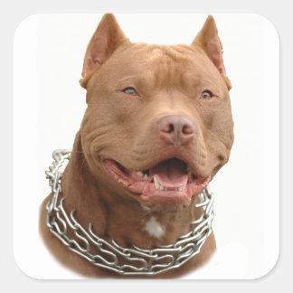 Chien de Pitbull Sticker Carré