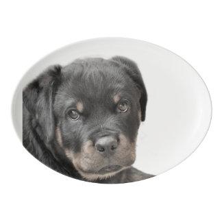 Chien de rottweiler plateau de service en porcelaine