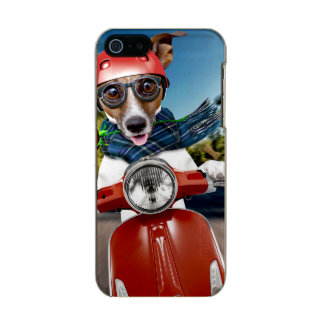 Chien de scooter, cric Russell Coque iPhone 5 Incipio Feather® Shine