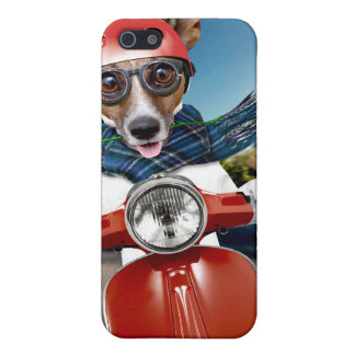Chien de scooter, cric Russell iPhone 5 Case