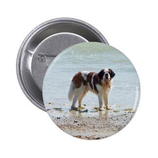 Chien de St Bernard au bouton de plage goupille Pin's