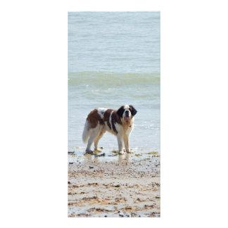 Chien de St Bernard au signet de plage, idée de ca Cartes Doubles Customisables