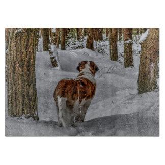 Chien de St Bernard dans la neige Planche À Découper