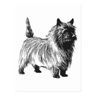 Chien de Terrier de cairn Carte Postale
