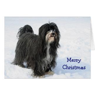 Chien de Terrier tibétain dans la carte de Noël