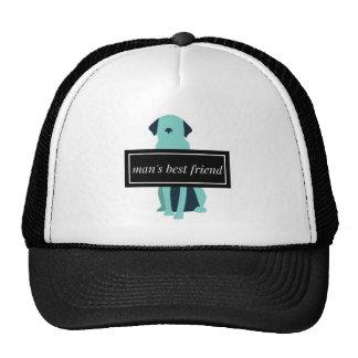 Chien du meilleur ami de l'homme casquette