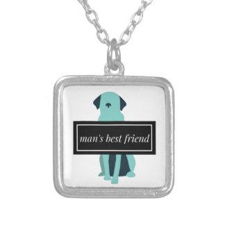 Chien du meilleur ami de l'homme collier