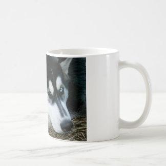 Chien enroué mug