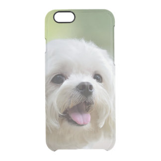 Chien maltais blanc collant la langue coque iPhone 6/6S