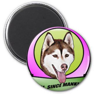 Chien mignon de chien de traîneau sibérien aimant