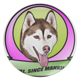 Chien mignon de chien de traîneau sibérien assiettes en mélamine