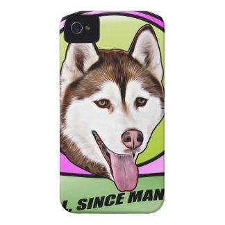 Chien mignon de chien de traîneau sibérien coques Case-Mate iPhone 4
