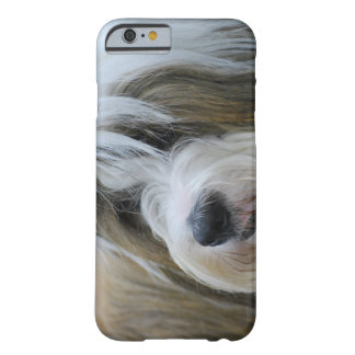 Chien mignon de Terrier tibétain Coque iPhone 6 Barely There