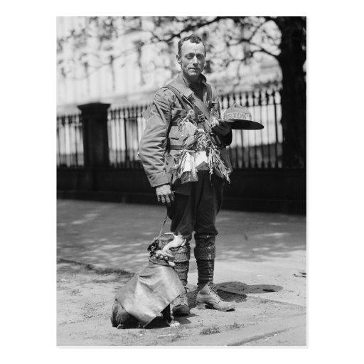 Chien portant un manteau, les années 1920 carte postale