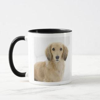 Chien sur le divan mug