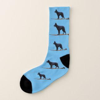 Chien surfant - grandes chaussettes de berger noir