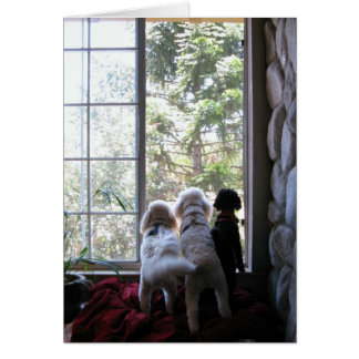 Chienchiens dans la fenêtre carte de vœux