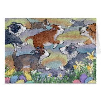 Chiens de chasse d'oeufs, carte de border collie