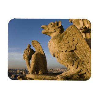 Chimère sur la façade de la cathédrale de Notre Da Magnet Rectangulaire Avec Photo