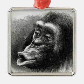Chimpanzé déçu et boudeur ornement carré argenté